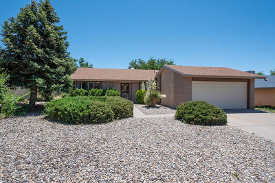 Albuquerque Single Family Home For Sale: 12300 Kinley Avenue NE