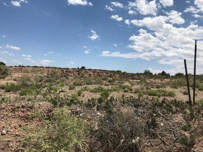 Socorro County Residential Lots & Land For Sale: 1323 Lopezville Road