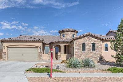 Rio Rancho Single Family Home Active Under Contract - Reloca: 1901 Vista De Colinas Drive SE