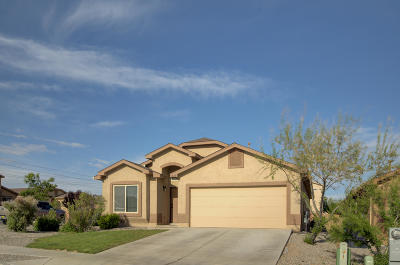 Rio Rancho Single Family Home For Sale: 4028 Desert Pinon Drive NE