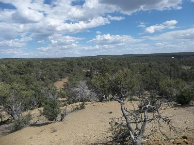 Cibola County Residential Lots & Land For Sale: Lots 8-15 Wagon Wheel Trl -candy Kitchen