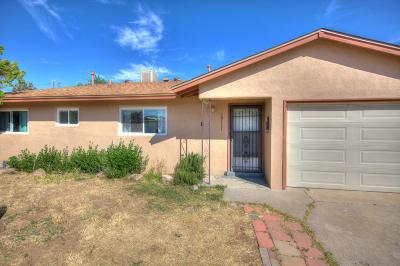 Albuquerque Single Family Home For Sale: 10117 Betts Drive NE