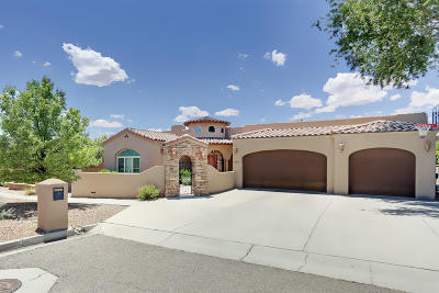 Albuquerque Single Family Home For Sale: 8309 Vina Del Sol Drive NE