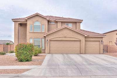 Single Family Home For Sale: 1600 Roble Drive SE
