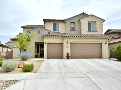 Rio Rancho Single Family Home For Sale: 4020 Colina Roja Lane NE