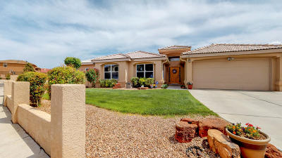 Albuquerque Single Family Home For Sale: 10139 Sierra Hill Drive NW