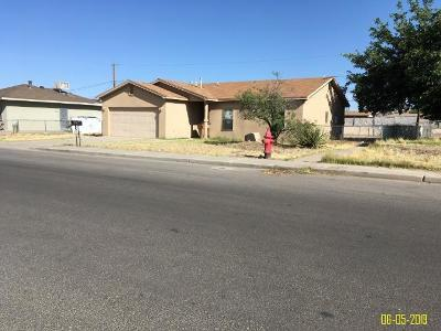 Las Cruces Single Family Home For Sale: 1075 Poplar Avenue