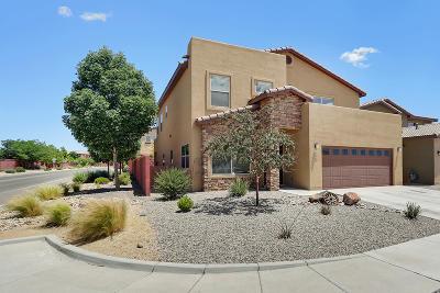 Sandoval County Single Family Home For Sale: 3369 Llano Vista Loop NE