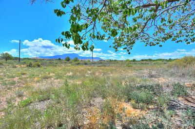 Residential Lots & Land For Sale: 1492 New Mexico State 313 Road