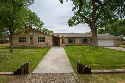 Albuquerque Single Family Home For Sale: 2512 Norment Road SW