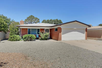 Albuquerque Single Family Home For Sale: 709 Truman Street NE