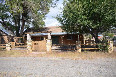 Catron County Single Family Home For Sale: 29 Old State Rte