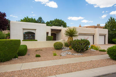 Albuquerque Single Family Home For Sale: 2309 Rozinante Drive NW