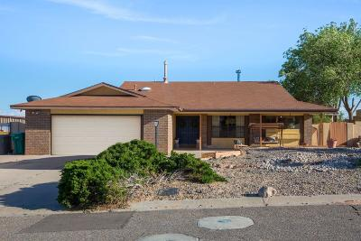 Rio Rancho Single Family Home For Sale: 357 4th Avenue NE