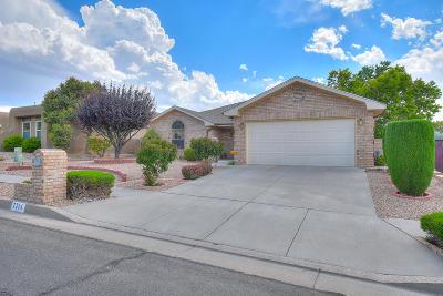 Albuquerque Single Family Home For Sale: 7714 Quintana Drive NE