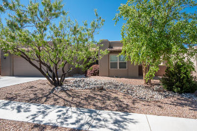 Albuquerque Single Family Home For Sale: 7400 Pawnee Creek Trail