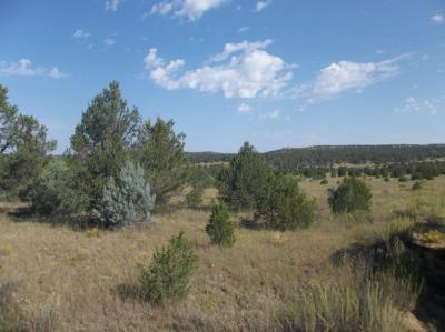 Cibola County Residential Lots & Land For Sale: Lots 29-30 Sandstone - Candy Kitchen Lane