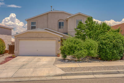 Albuquerque Single Family Home For Sale: 10916 Argonite Drive NW