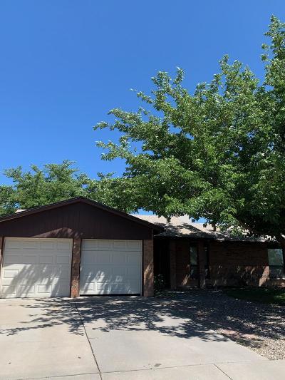 Albuquerque Single Family Home For Sale: 8252 Ruidoso Road NE