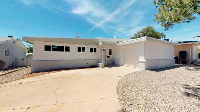 Albuquerque Single Family Home For Sale: 1505 Elizabeth Street NE