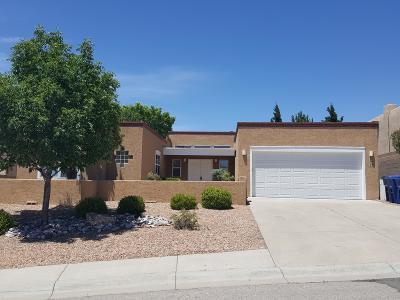 Single Family Home For Sale: 343 Pinon Creek Road