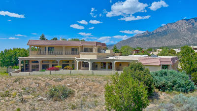 Albuquerque Single Family Home For Sale: 1541 Eagle Ridge Place NE