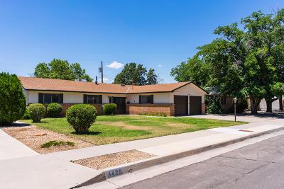 Single Family Home For Sale: 1501 Boatright Drive NE