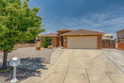 Albuquerque Single Family Home For Sale: 4347 Bryan Avenue NW
