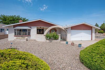 Albuquerque Single Family Home For Sale: 1229 Kirby Street NE