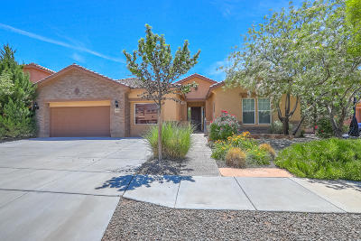 Rio Rancho Single Family Home For Sale: 3518 Colina Serena Place NE
