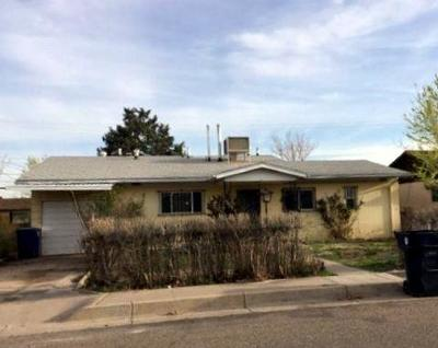 Albuquerque Single Family Home For Sale: 5013 Mescalero Road NE