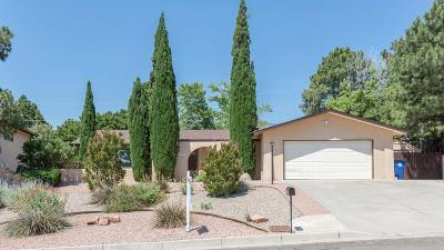 Albuquerque Single Family Home For Sale: 13213 Pinehurst Avenue NE