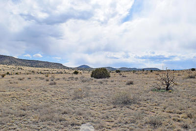 Socorro County Residential Lots & Land For Sale: Lot 3 Golden West Loop