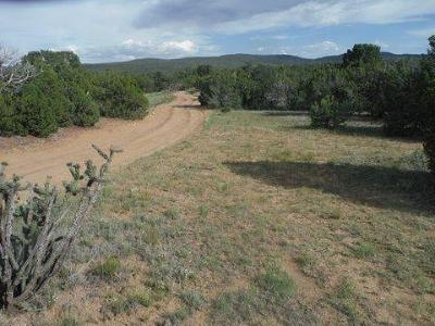 Bernalillo County Residential Lots & Land For Sale: 500 Forest Road 462