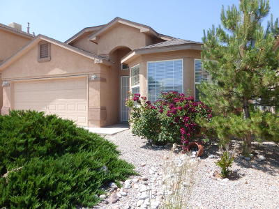 Rio Rancho Single Family Home For Sale: 705 Soothing Meadows Dr NE
