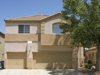 Albuquerque Single Family Home For Sale: 6919 Kayser Mill Road NW
