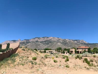 Albuquerque Residential Lots & Land For Sale: 12073 Irish Mist Road NE