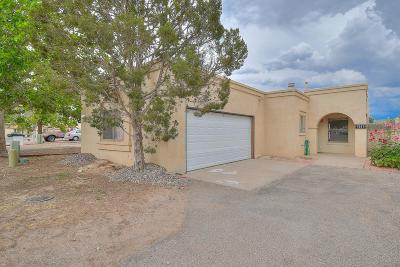 Rio Rancho Single Family Home For Sale: 1641 Skyview Circle NE