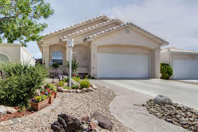 Rio Rancho Single Family Home For Sale: 3054 Copper Creek Road