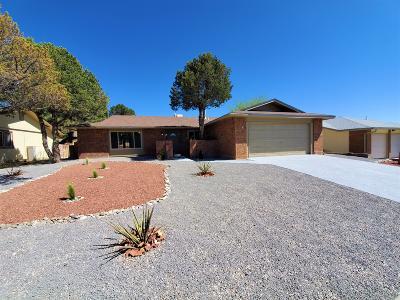 Albuquerque Single Family Home For Sale: 1412 Nemesia Place NE