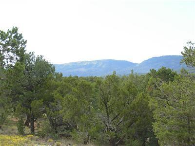 Bernalillo County Residential Lots & Land For Sale: 73 Canyon Ridge Drive