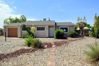 Rio Rancho Single Family Home For Sale: 285 Quixote Drive SE