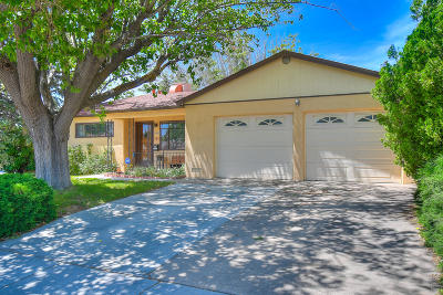 Albuquerque Single Family Home For Sale: 11001 Baldwin Avenue NE