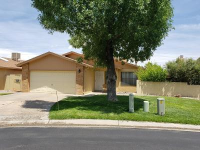 Albuquerque Single Family Home For Sale: 10405 Clyburn Park Drive NE
