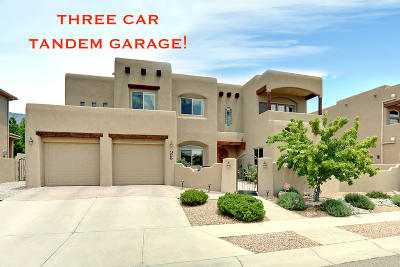 Albuquerque Single Family Home For Sale: 8208 Grape Vine Court NE