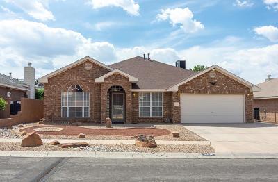 Albuquerque Single Family Home For Sale: 9304 Jill Patricia Street NW