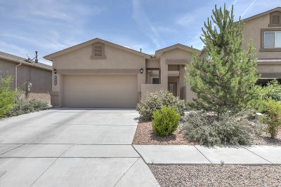 Albuquerque Single Family Home For Sale: 8920 Eagle Hills Drive NW