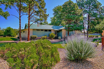 Albuquerque Single Family Home For Sale: 925 Alameda Road NW