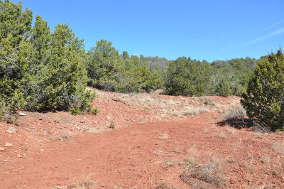 Bernalillo County Residential Lots & Land For Sale: 67 Vallecitos Road