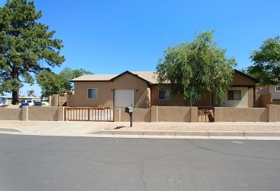 Albuquerque Single Family Home For Sale: 10201 Ellen Court NE
